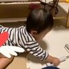 赤ちゃんいると家は清潔にしないとね!コロコロのイライラ解消★ニトリのコロコロシート紹介