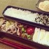 【今週のお弁当】体調不良で3日だけ。枝豆多しのお弁当。