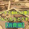 宝くじ当たり待ちの人生〜ボーナスBIG12億円が当たったら〜【消費編】