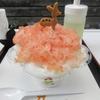 【奈良かき氷】 大仏いちご さん