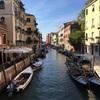 ベネチア観光は橋と水路と船と猫(世界の猫探し81~83匹目)