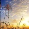 二十四節気七十二候 「秋分 蟄虫坏戸」(2017/9/30)