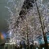 12月2日お休みです 〜12月スケジュール@秋葉区〜