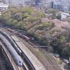 2019.04.13  飛鳥山の桜と新幹線三昧、京急800形、中央線209系1000番台