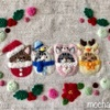 ねこの周りのまん丸いっぱいリース・クリスマスの額飾り