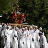 ほうらい祭りの神輿が急な石段を下る様を見たい