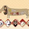 韓国の犬のしつけ・教育番組がめっちゃ参考になる