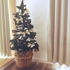 もうすぐクリスマス!皆様の年末のご予定はいかがですか(コンパニオンめぐみ)
