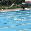 藤沢市での(競泳種目含む)フィンスイミング大会