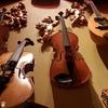 イタリアで音楽留学〜どこで学ぶ?〜