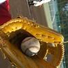 息子の夏休みは野球ばかり