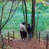 魚沼地方と野沢温泉への1泊2日旅行。(その1 雨の魚沼地方を満喫するドライブ)
