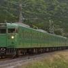 第1341列車 「 緑の世界~抹茶色の113系を狙う 2020・GW 草津線紀行その1 」