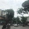 【ベトナム】ハノイを街歩き。歩いて楽しいベトナムの首都
