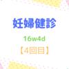 16w4d 妊婦健診【4回目】 子宮頸管が短い?