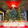 夜景デートに最適!金沢のクリスマスツリー【2017】