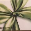 AMEX 百貨店ギフトカードはこんな感じでした! さすがギフト用、きちんとした包装でした
