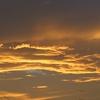 黄金色の夕焼け