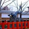 京都トレイル 東山コース(2回目)