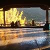 豊臣秀吉 が建設を命じた 千畳閣  の床に映る銀杏に心を奪われた ~広島県 宮島~