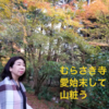 京都滋賀 季節を変えて 二度三度(ブログタイトルまで五七五^ ^)