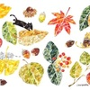 Thousand leaves     千の葉