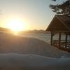 田沢湖ドライブでおすすめの甘味 3選