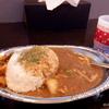「新年神社巡り2020」長岡遠征編の食事は何故か、燕と長岡でカレー(翌日の加茂でも)