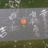 神頼みに走る三十路〜出雲旅行記体験談〜その4 八重垣神社