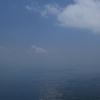 びわ湖バレイ スイセンの丘