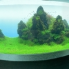 【アクアリウム】カップル、家族にもおすすめのすみだ水族館!