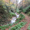 ◆11/12         晩秋の温海嶽へ③…二ノ滝~三ノ滝