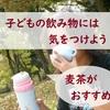 子どもの飲み物には何がいい?お水か麦茶で水筒を持つクセをつけよう!