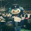 2019-20 B1リーグ 第2節 横浜ビー・コルセアーズ vs 秋田ノーザンハピネッツ GAME2