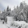 ☆週末の雪道散歩、3時間・・・。