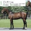 【キャロットクラブ2021募集馬】尺・歩様・動きを評価!(60)▶︎(73)【第二のクラージュゲリエに出資したい…】
