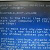 ThinkPad(Lenovo T410S(2910))がbootしないのでデータを救済中