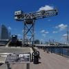 横浜ハンマーヘッドに隣接する「ハンマーヘッドパーク」横浜港を一望する新スポットオープン