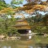 hamatra YOUTH 005:そうだ 京都、行こう。