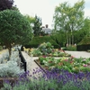 ミモザ・ガーデンの日記 ホランド・パークの花壇