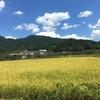 田舎の兼業米農家について 農業は儲かるの?