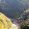 京都 嵐山高雄パークウェイから望む景色は「めっちゃ気持ちいい~」