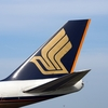 ANA SFC修行でシンガポール航空のビジネスクラスセール航空券を購入しました。