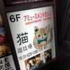 打ち合わせから新宿、ネコカジ→ジクー横断