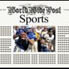 1年中メディアに取り上げられるプロ野球