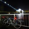 猫と夜景と魚釣り、東京ゲートブリッジが見える若洲公園ナイトライド