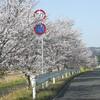 朝倉三連水車と寺内ダム