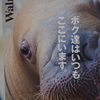 【城崎マリンワールド】水族館の秘密ってなに??
