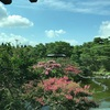 7/15  nakwachのお茶会〜サインがいっぱいの和やかなトーキングサークル