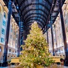 ロンドンクリスマスツリー見物